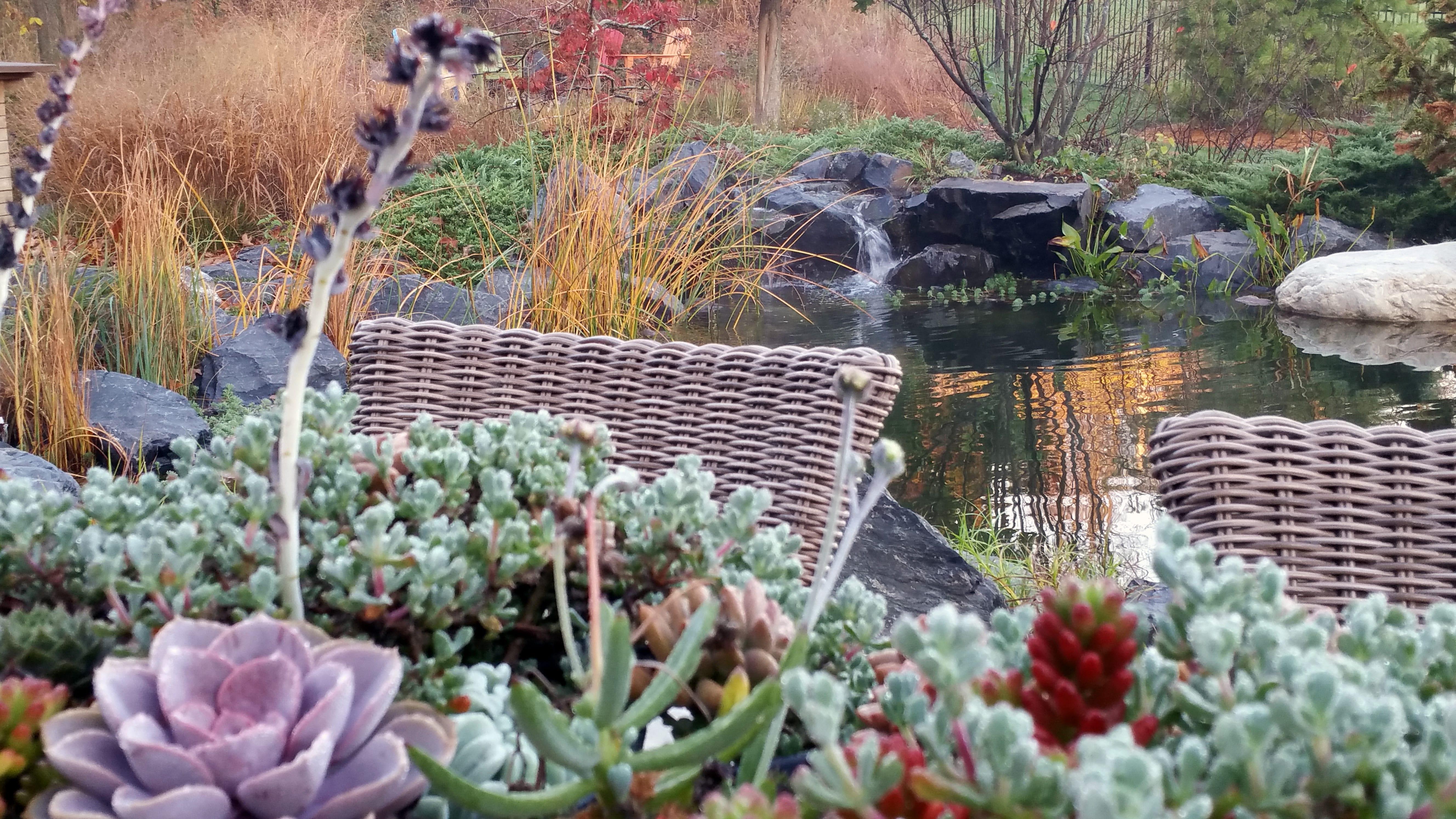 Recreational Pond