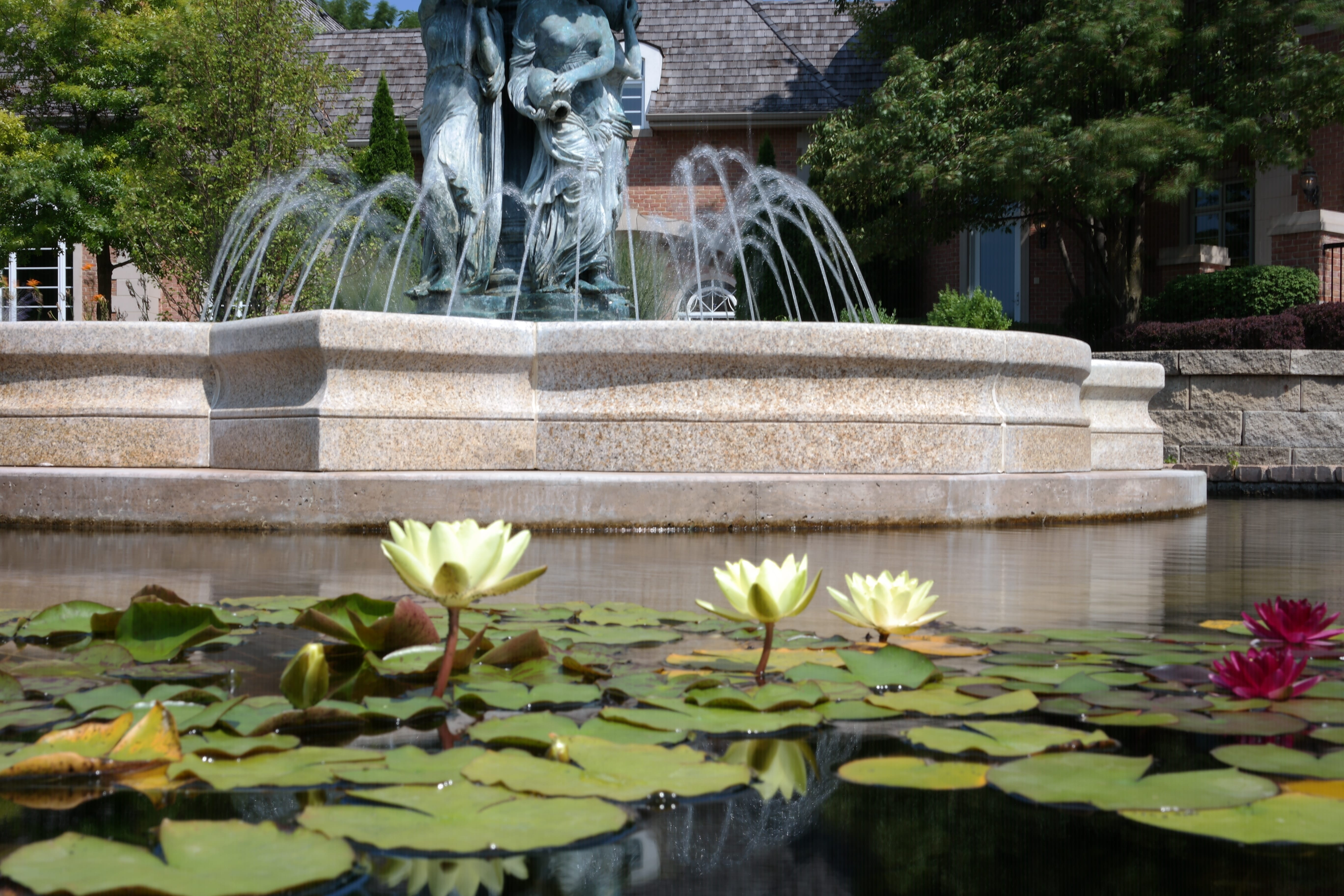 Formal Fountain And Pond Reflections Water Gardens