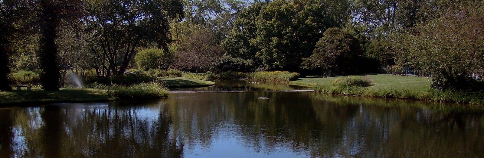 Water garden banner