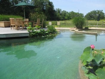 How do natural pools work?
