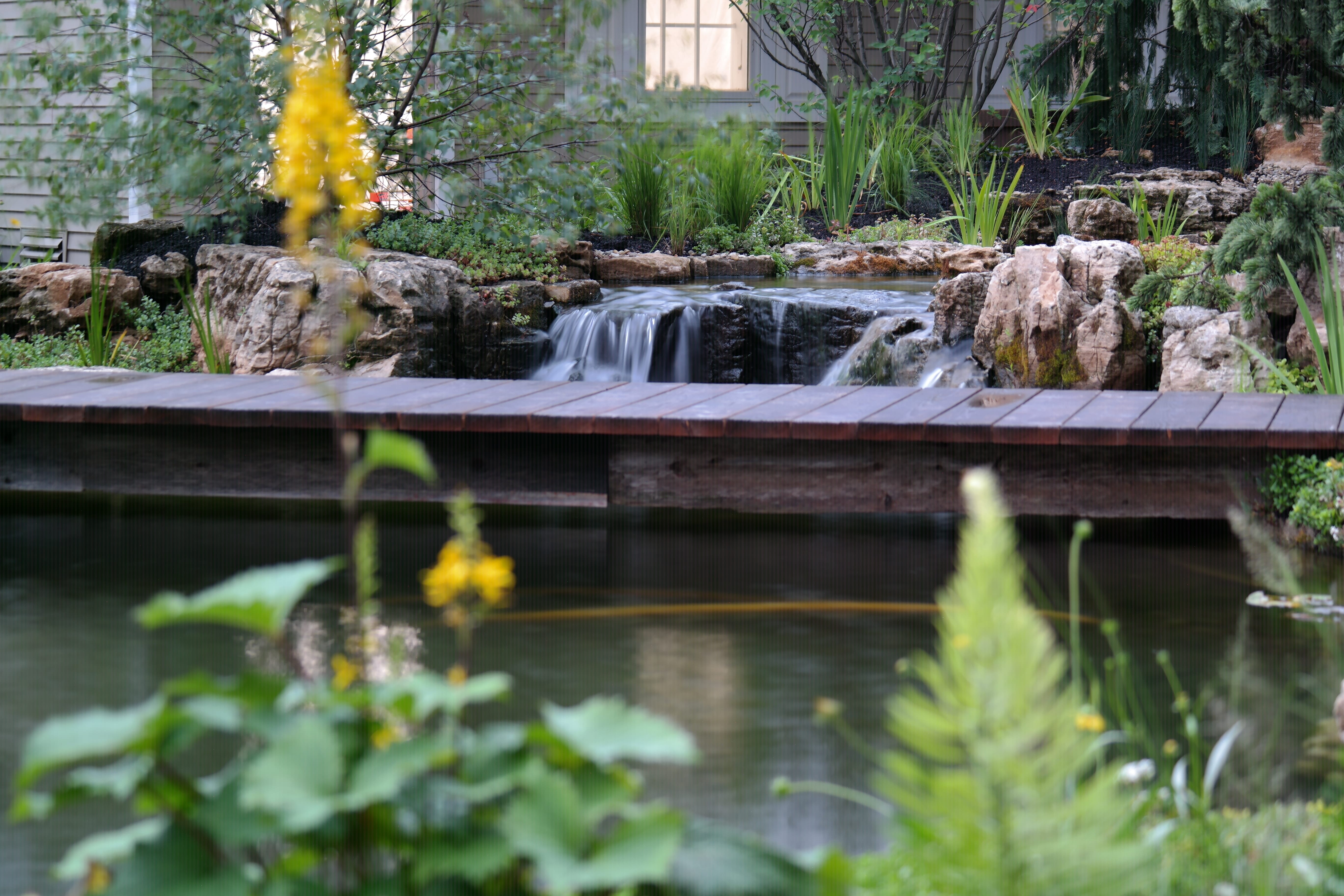Dream Backyard With Incredible Koi Pond Reflections Water Gardens