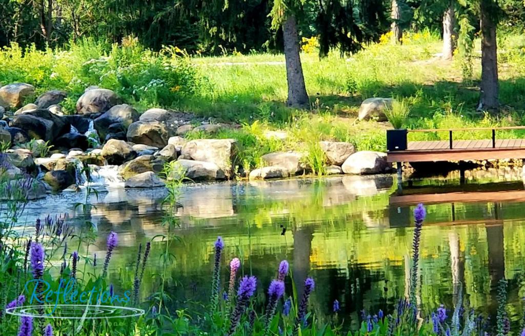 Natural Pond Installation
