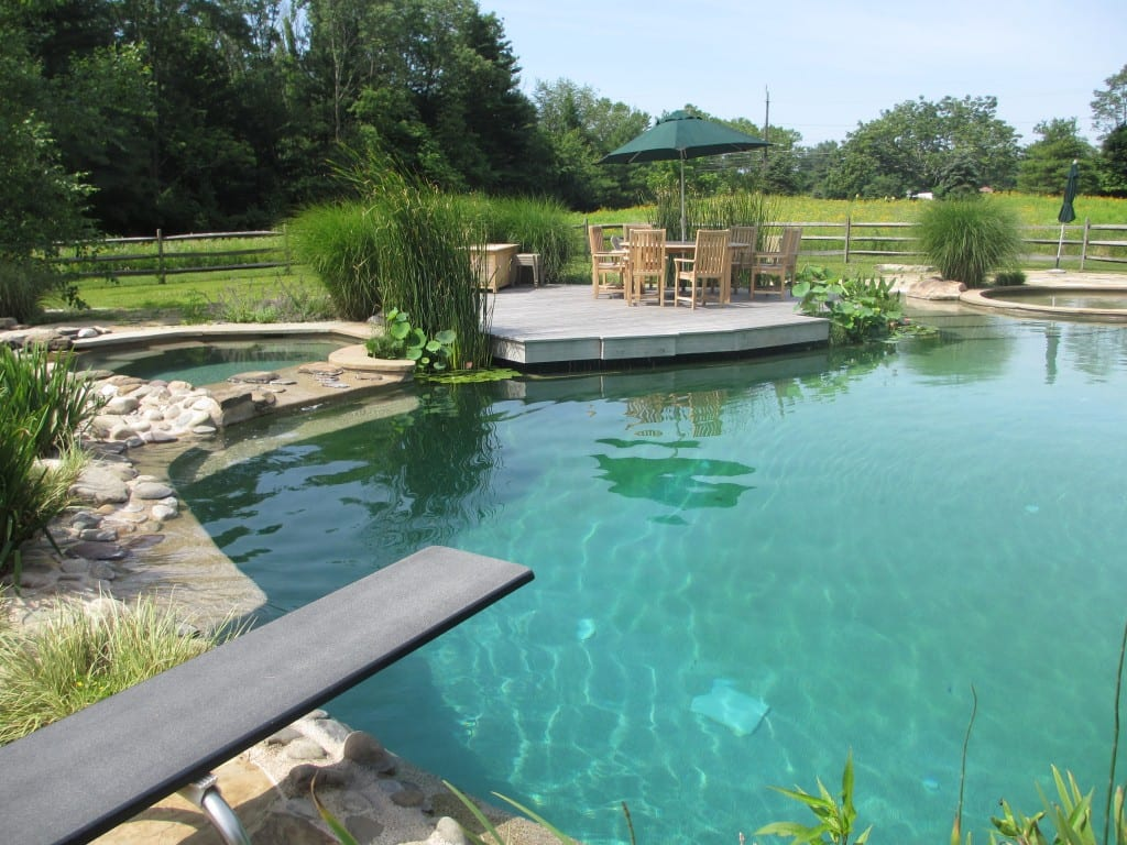 Prevent Accident in Natural Pools Blog