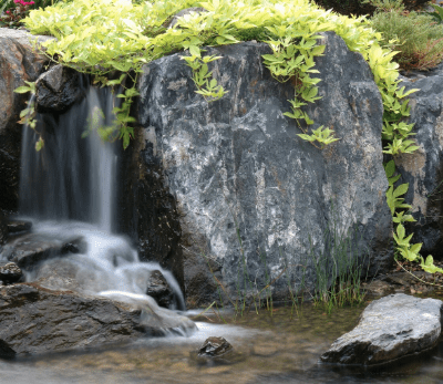 How to Choose the Right Rocks for your Natural Water Garden Project