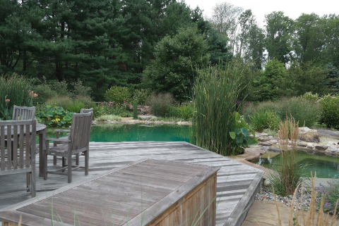 Schedule your Water Garden Project this Winter